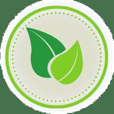 Home Wellness Environment